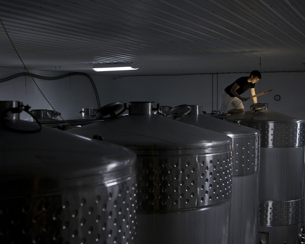 We ferment our Rieslings in stainless steel.