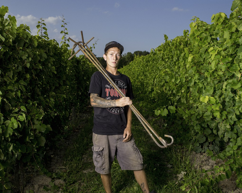 Vineyard Associate, John Swick, 2017.