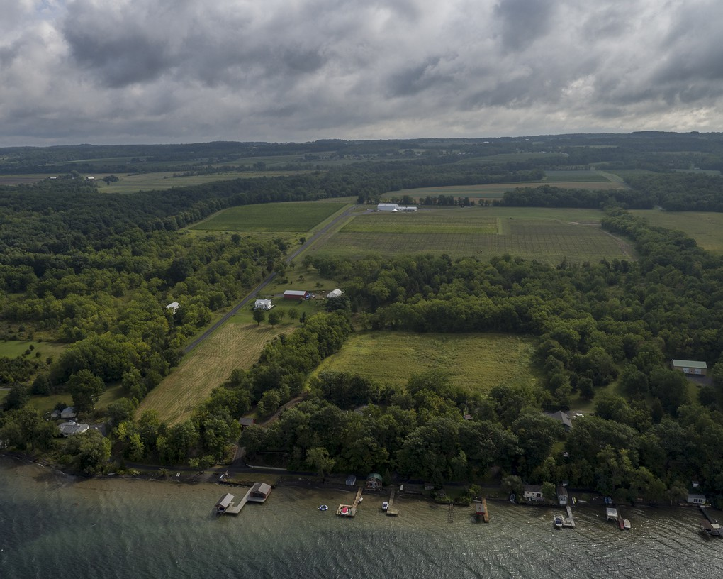 Our vineyards are planted close to the shore of Seneca Lake.